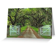 Tomotley Plantation, Sheldon, South Carolina Greeting Card