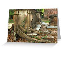 Confederate gravestone and live oak roots, Old Sheldon Church Ruins, Sheldon, South Carolina Greeting Card