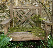 Rosmary's Chair - Barnsley House by Daisy-May