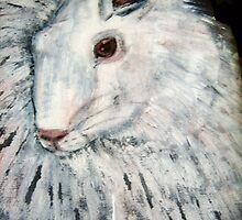 white rabbit by margaretfraser