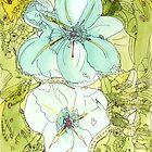 i-flowers-01 by Annie Conn