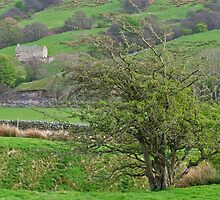 Coverdale by WatscapePhoto