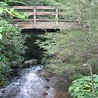A River Runs Through It by kaitonthekeys