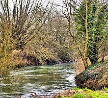 The River Windrush (West), Witney, Oxfordshire by Karen Martin