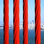 San Francisco from the Golden Gate Bridge, through the Steel Ropes. California 2009 by Igor Pozdnyakov