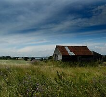 Abandoned Shed In Wrabness Field by Trevor Durrant