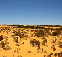 The Pinnacles #2, Cervantes, Western Australia by Elaine Teague