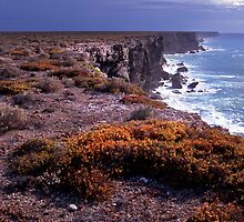 Australian Bight by Paul Mayall