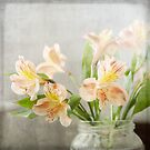 Freesias in Glass Jar by eyeshoot