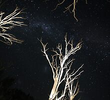 Night sky over lake Eildon- 30 sec exposure, torch on trees by Tony Wratten