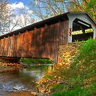 Spring at Glen Hope Covered Bridge by Monte Morton