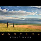Fields of Montana, ©2010 Roland Taylor by Roland Taylor