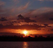 Sunset Chorus by Joanne  Bradley