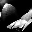 Australian Sydney Opera house by moon light by Andrew Wilson