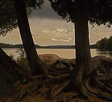 Algonquin park sunset, Ontario Canada by creativegenious