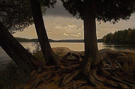 Algonquin park sunset, Ontario Canada by creativegenious