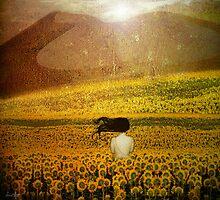 Mirando al Sol by dmcart