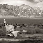 Japanese Peace Crane at Manzanar by clckac