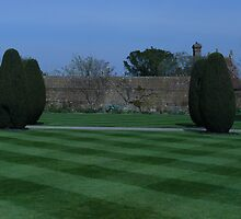 Sissinghurst topiary by Portia Greenwood