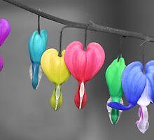 Rainbow Heart by Stephanie Hillson