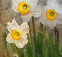 Time Worn Floral by digitalmidge