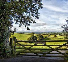 Southcoombe, Nr. Crediton, Devon by Squealia