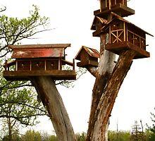 Bird village by tanmari