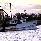Boat on the Hunter River VII. by Emily Jane