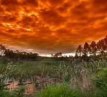 Like an Indian Summer Sunset by Sean Farrow