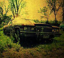 Forgotten Classic by AdamKnauer