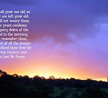 Anzac Day - They shall not grow old... by Sharon Robertson