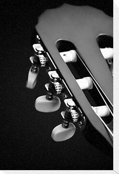 Acoustic Guitar Head - Black and White by Damon Lancaster
