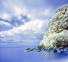 Onemana Beach infrared 2 by Paul Mercer