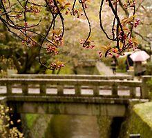 Path of Philosophy at Kyoto by Sturmlechner