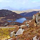 Gloyw Lyn from the slopes of Rhinog Fawr, Wales by John Williams