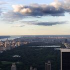 Central Park. New York, New York by Matt Jones