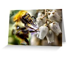 don't worry bee happy ..... Greeting Card