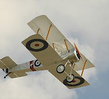 Sopwith Pup Replica @ Tyabb Airshow 2010 by muz2142