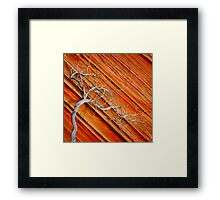 Wood & Stone Framed Print