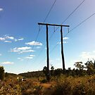 THE DARLING RANGE POWER LINE TRAIL by Marinapallett