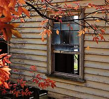 This Old House, View 2 by Meg Hart