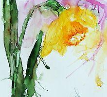 Daffodil by LuciaM