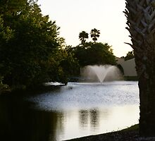 pond and palm trees by janwatts