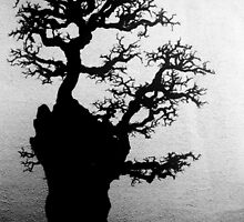 Skeletal Bonsai 2 by BuddhasWhiskers