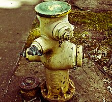 Fire Hydrant Soliloquy by jwilsonholmes