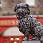 Greyfriars Bobby by Tannachy