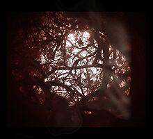 at dusk they awake by vampvamp