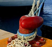 Port Of Cozumel : Ropes And Knots by artisandelimage