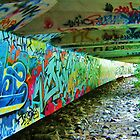 Graffiti Bridge by Earth Intruder