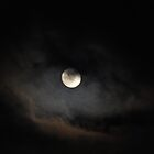 Dinosaur Moon by scenebyawoman
